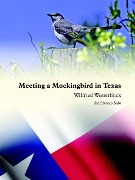 Westerlinck, W :: Meeting a Mockingbird in Texas